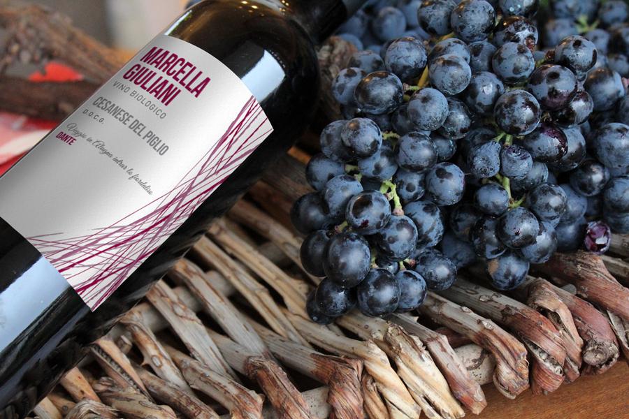 marcella giuliani red wine Cesanese dog